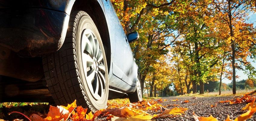 Як запобігти пошкодженню вашої машини від осіннього листя?
